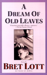 Dream of Old Leaves