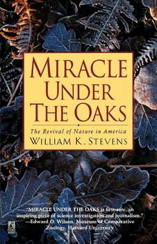 Miracle Under the Oaks