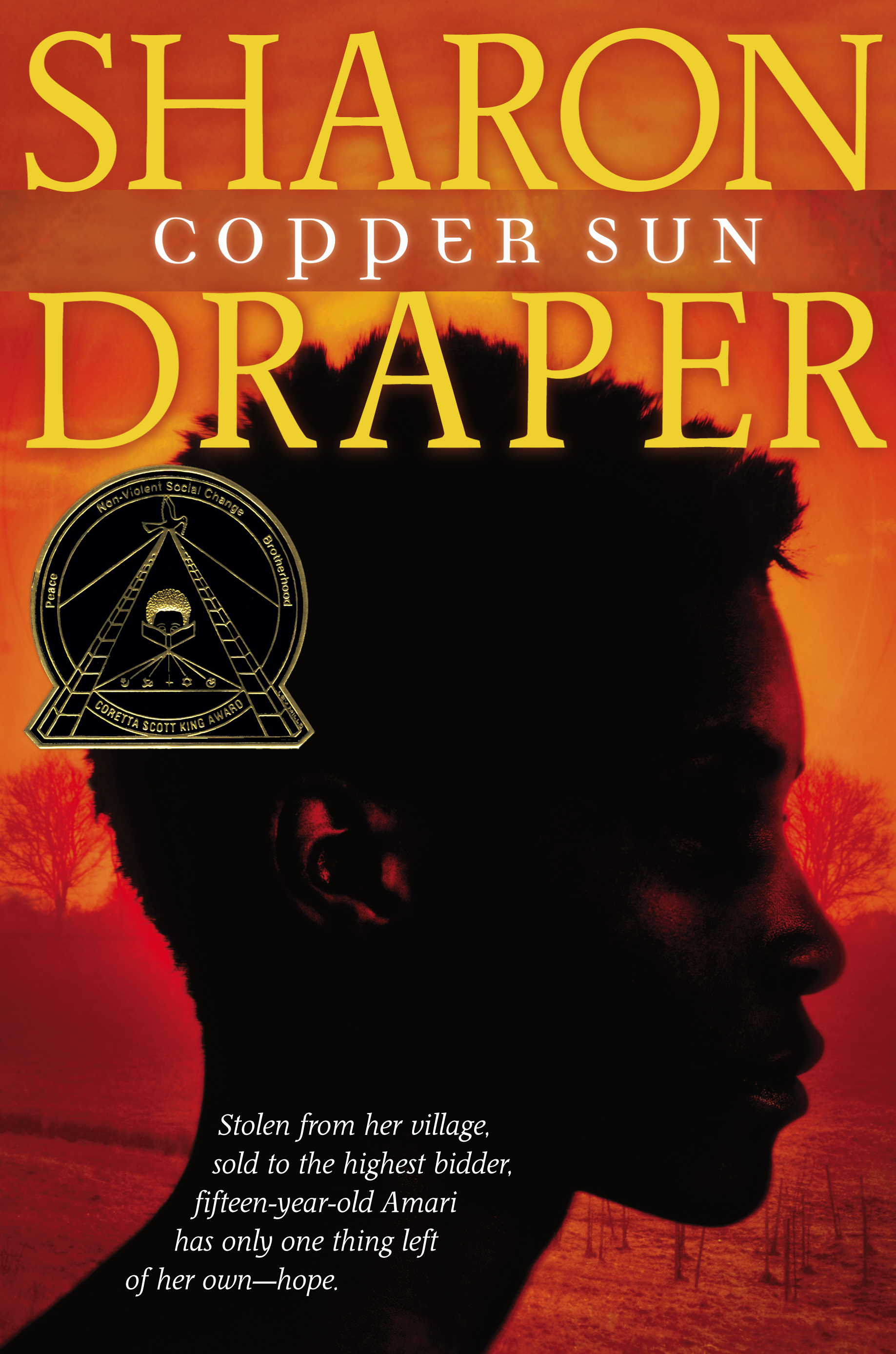 copper sun A timeline about copper sun by sharon m draper tells you what happens in order with the book and this also shows you how the african american's were treated.