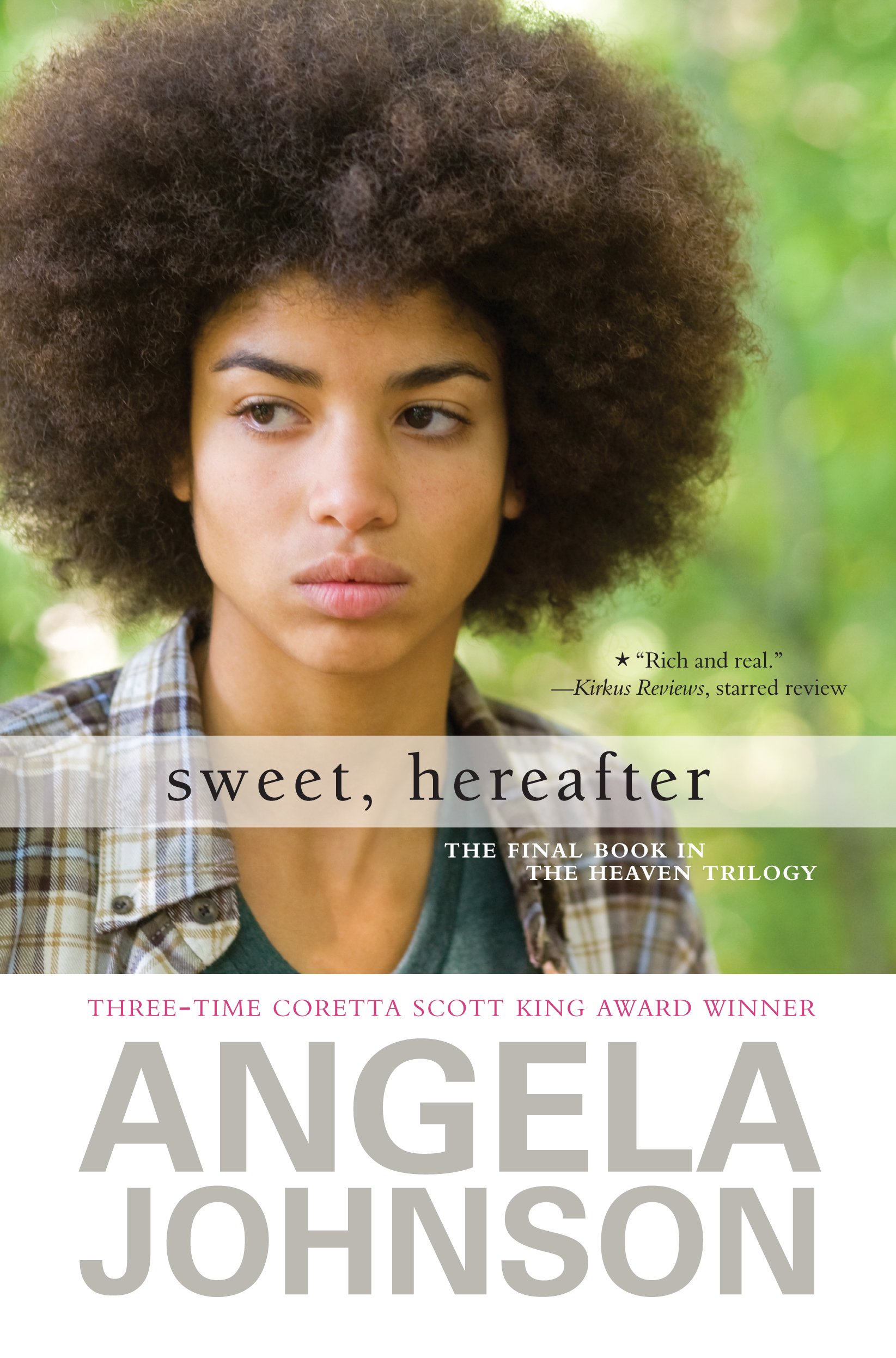 The Sweet Hereafter Themes