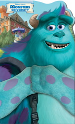 Disney Pixar Monsters University Go Sulley!