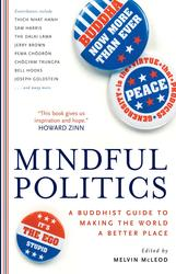 Mindful Politics