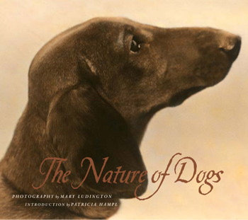 The Nature of Dogs