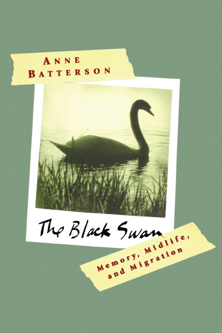 Black Swan Book Cover : The black swan book by anne batterson official