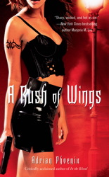 Rush of Wings book cover