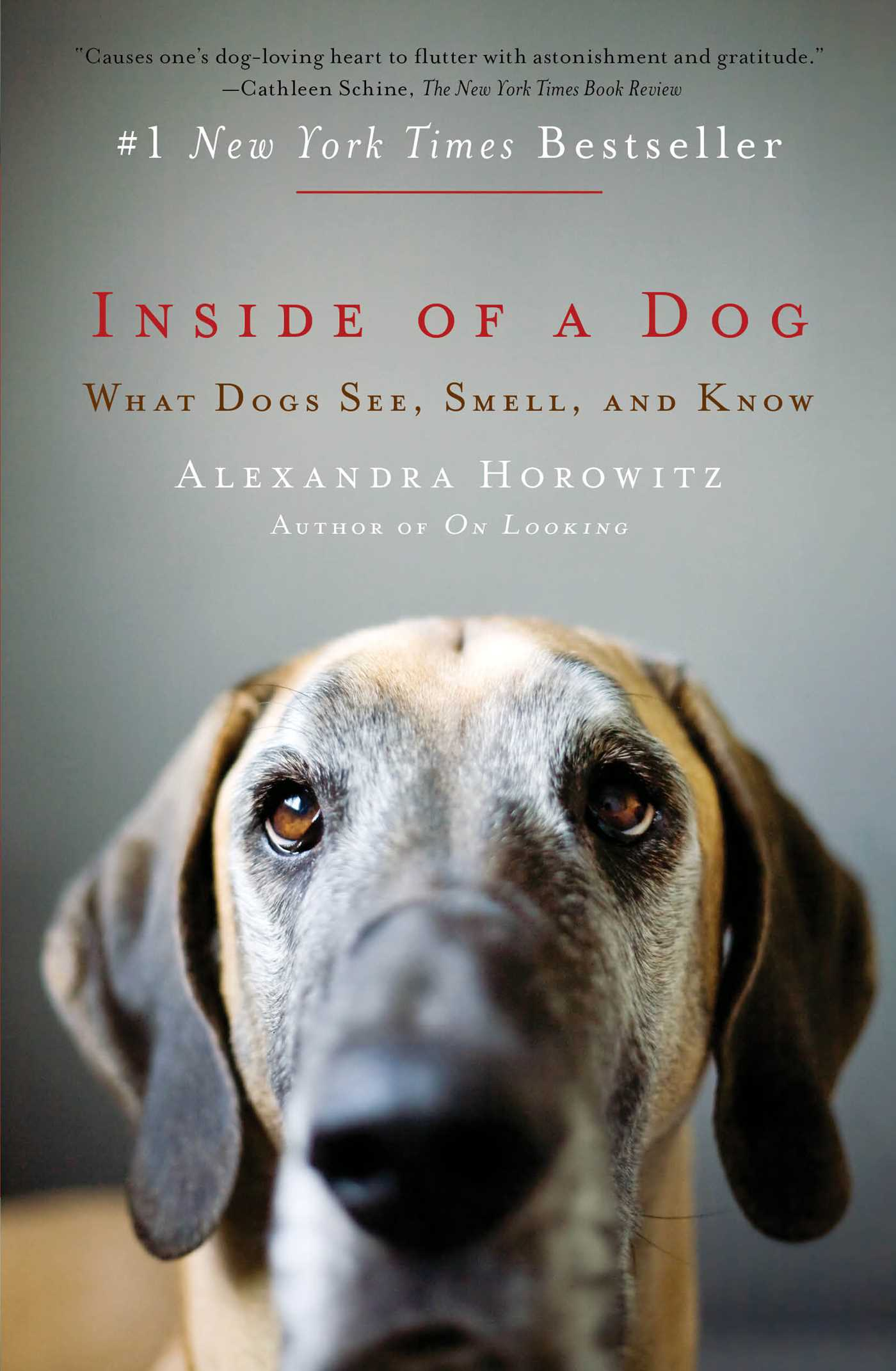 Inside-of-a-dog-9781416588276_hr