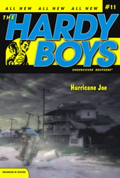 Hurricane Joe