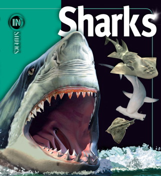 3-D Thrillers: Sharks and the World's Scariest Sea Monsters