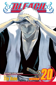 Bleach Vol 20