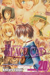 Black Cat, Vol. 20