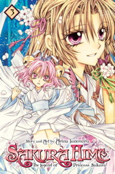 Sakura Hime: The Legend of Princess Sakura, Vol. 3