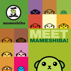 Meet Mameshiba!
