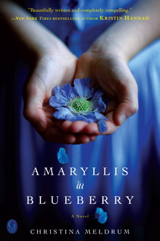 Amaryllis in Blueberry