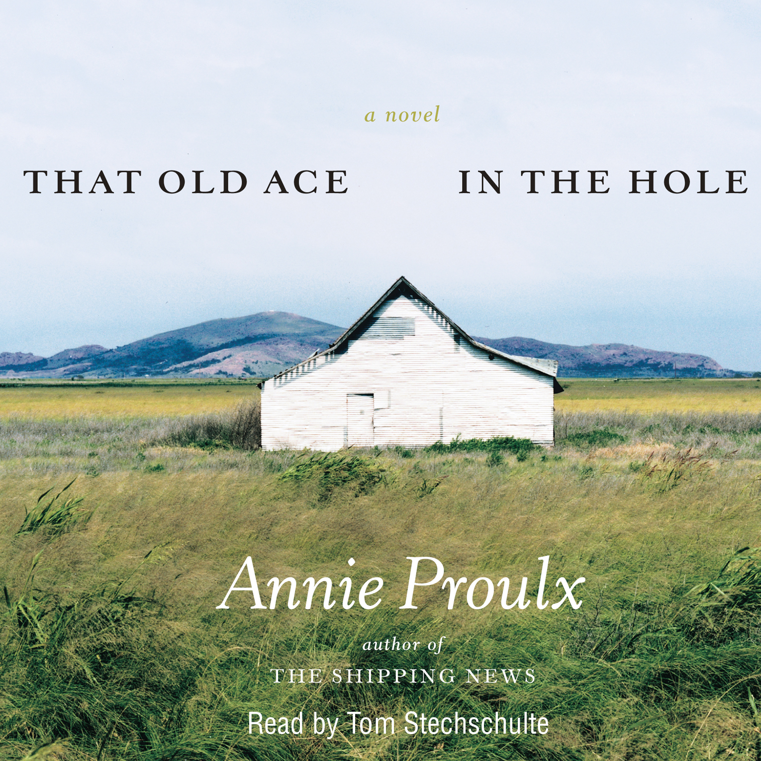 ace in the hole adult