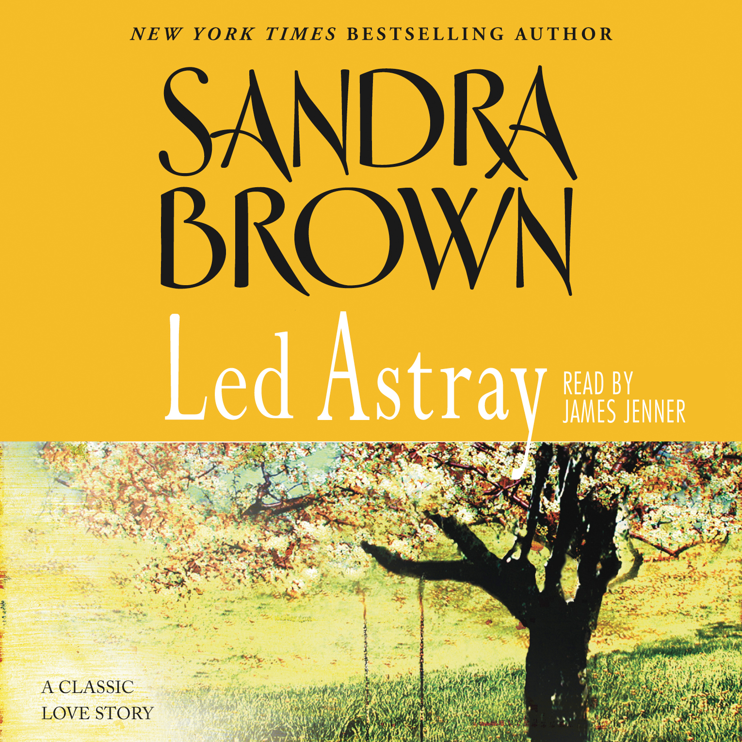 Smoke screen book by sandra brown official publisher page led astray fandeluxe Images
