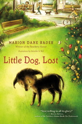 Little Dog, Lost