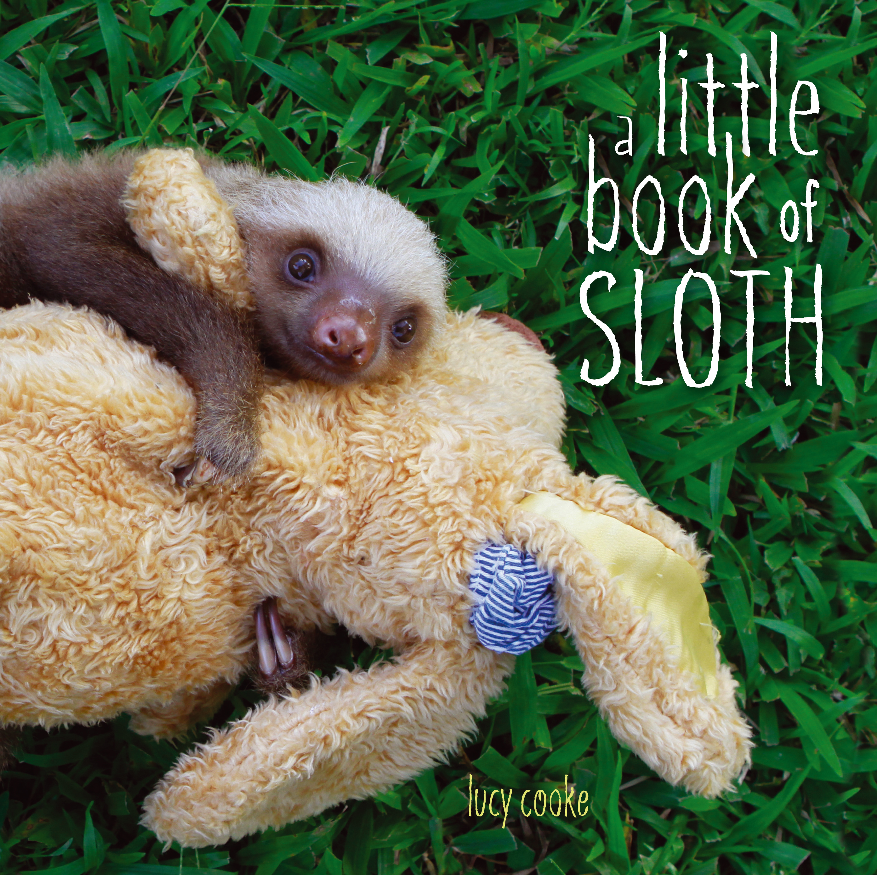 Image result for sloth book
