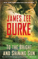 To the Bright and Shining Sun book cover