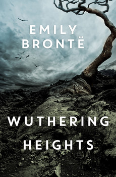 who is catherines true love wuthering heights