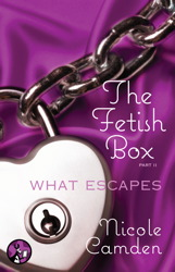 Fetish Box, Part Two book cover