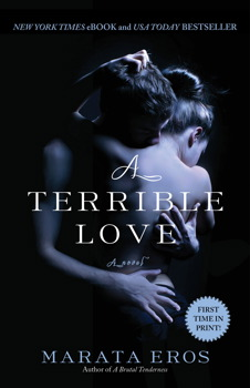 A Terrible Love