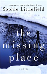 The Missing Place book cover
