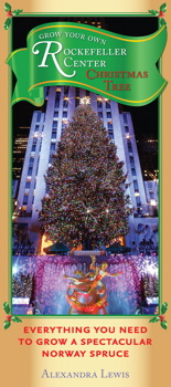 Grow Your Own Rockefeller Center Christmas Tree