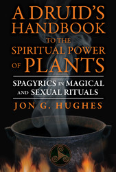 A Druid's Handbook to the Spiritual Power of Plants