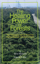 The Healing Power of Forests