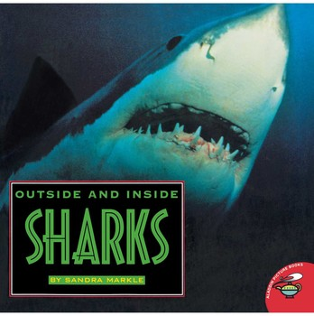 Outside and Inside Sharks