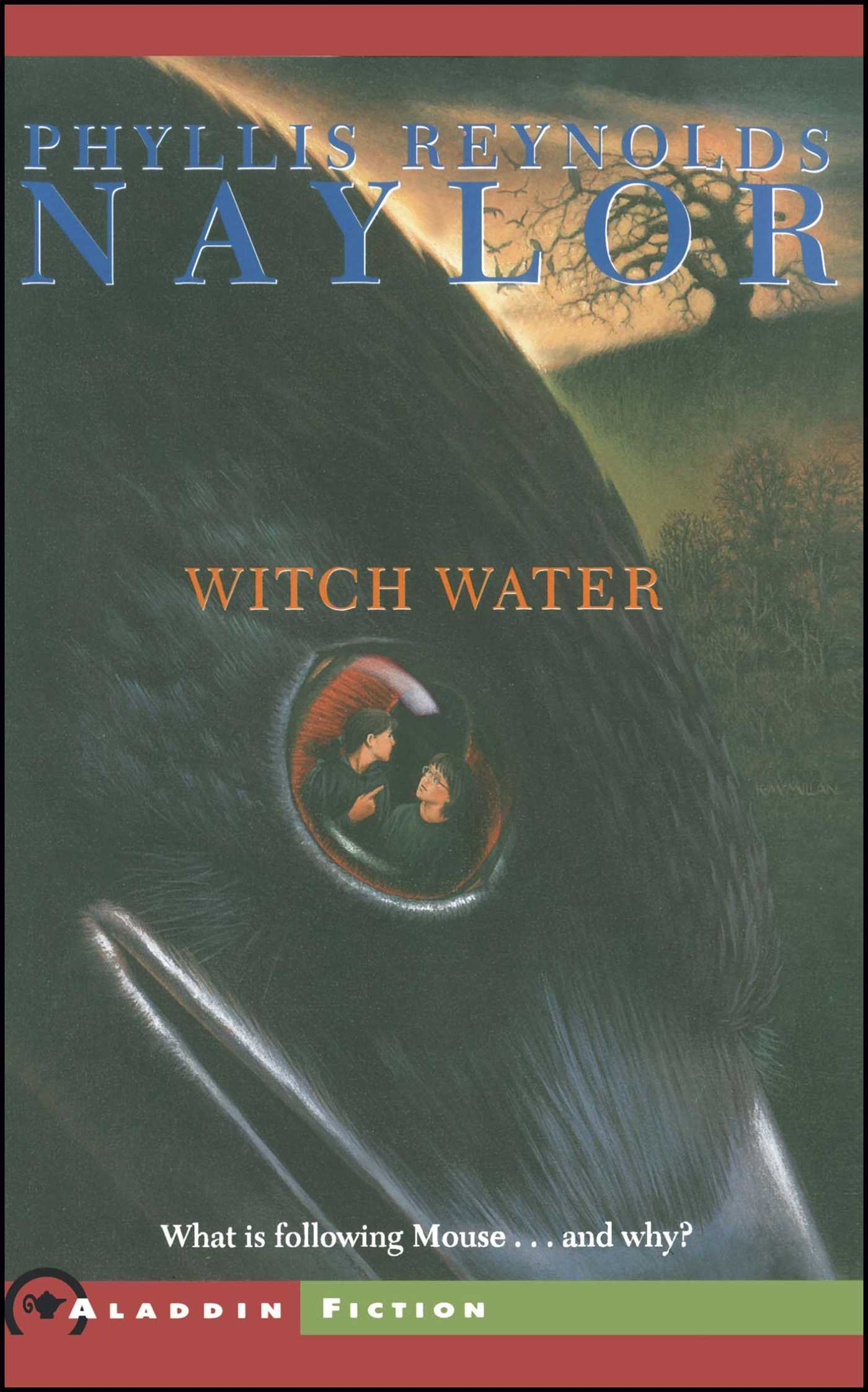 Witch water 9780689853166 hr