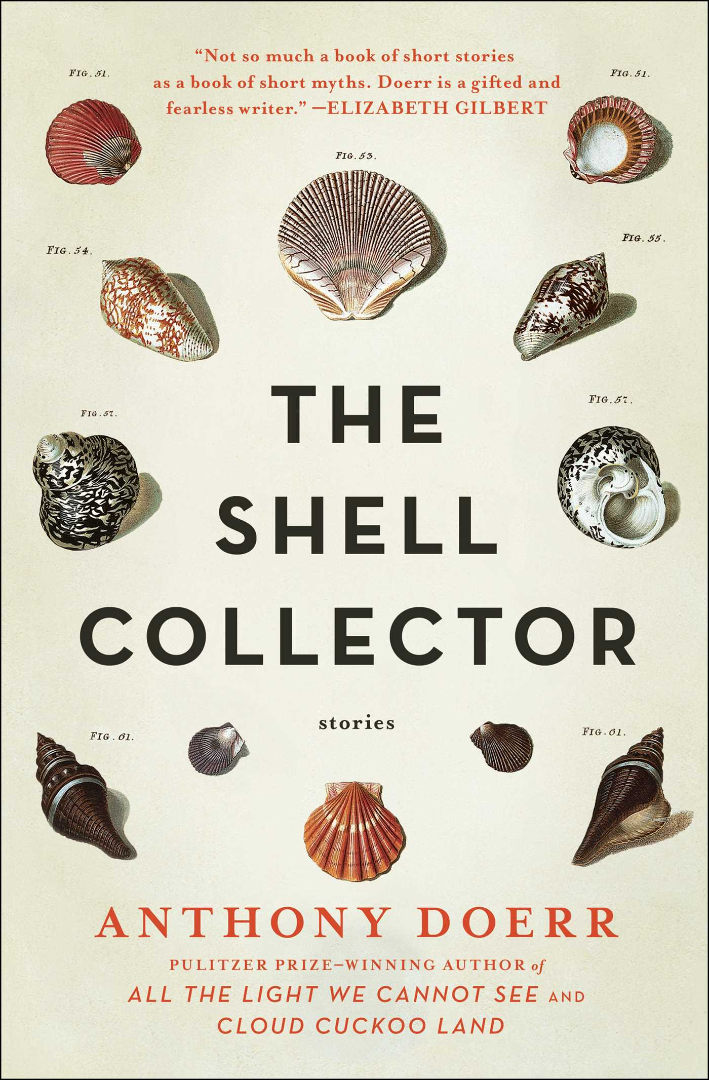 The shell collector 9780743223621 hr