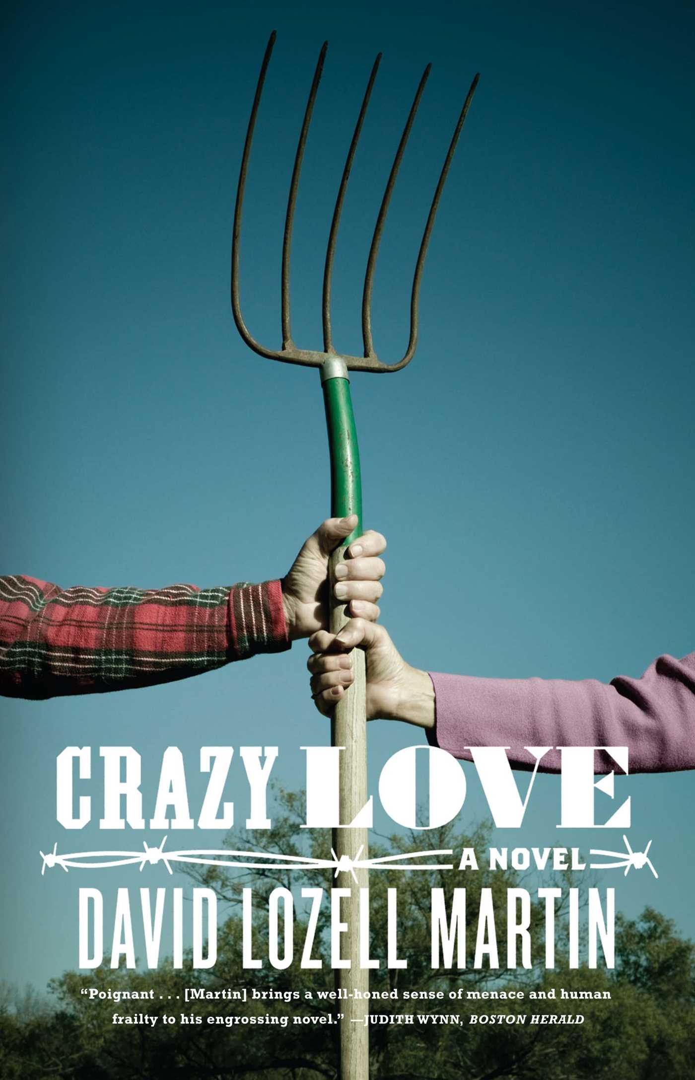 Crazy-love-9780743227643_hr