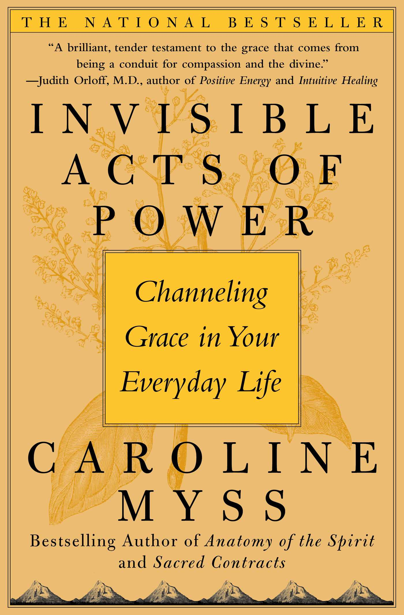 Invisible acts of power 9780743272124 hr