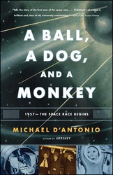 A Ball, a Dog, and a Monkey