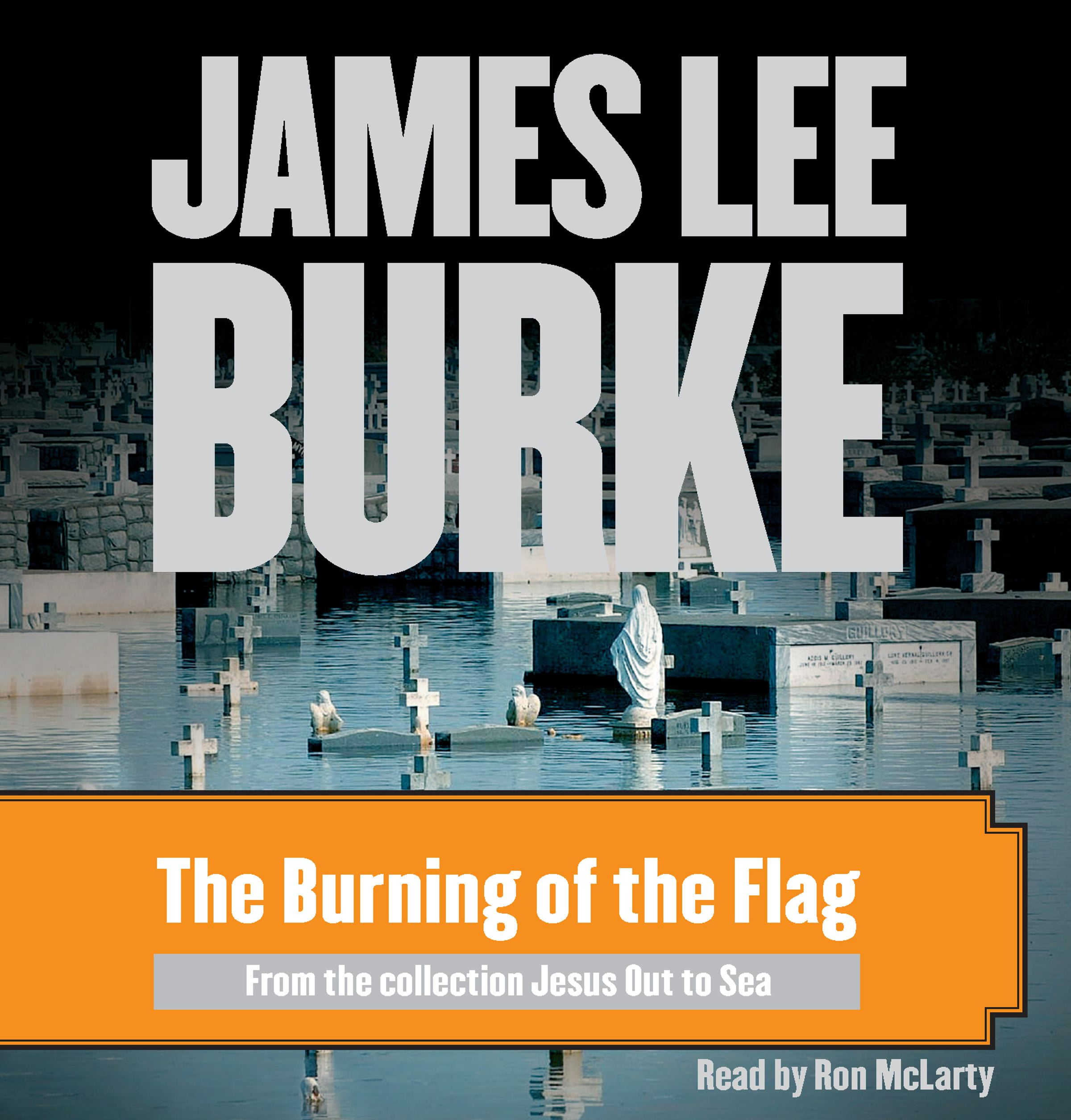 Burning-of-the-flag-9780743571494_hr