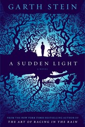 Sudden-light-9780857205780
