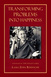 Transforming Problems into Happiness