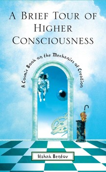 A Brief Tour of Higher Consciousness