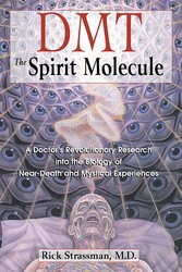 DMT: The Spirit Molecule