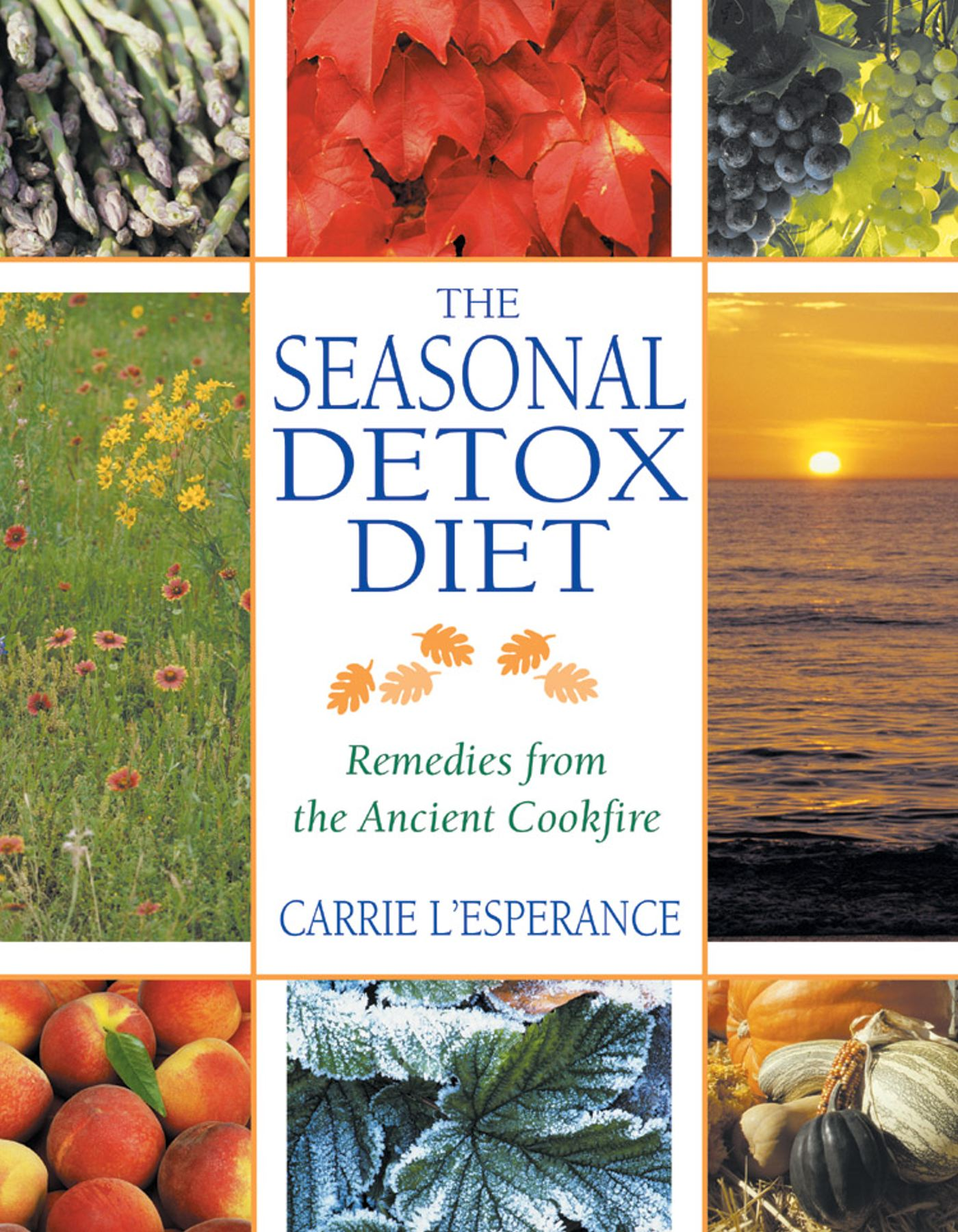 The-seasonal-detox-diet-9780892819829_hr