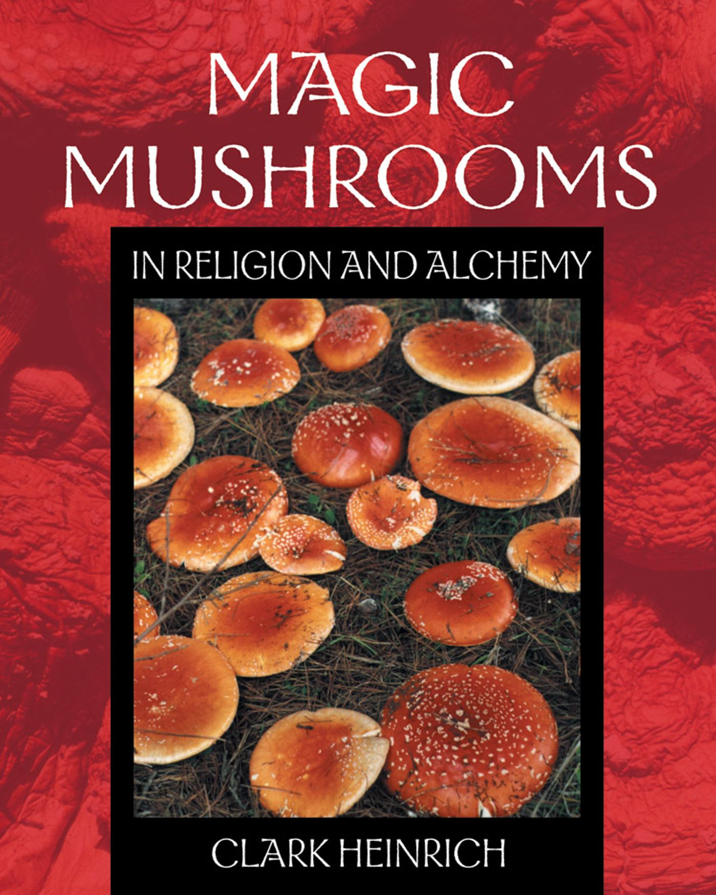 Magic mushrooms in religion and alchemy 9780892819973 hr