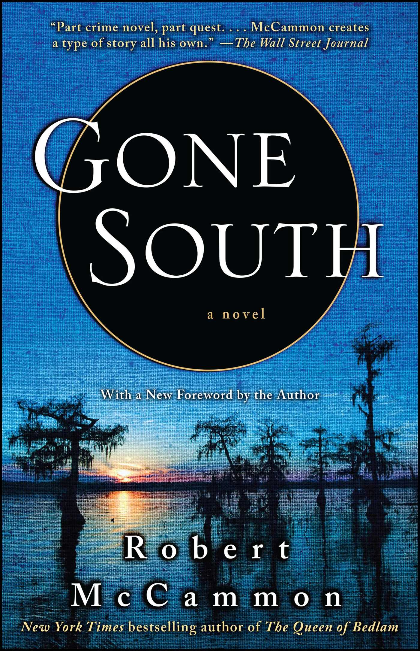 Gone-south-9781416577799_hr