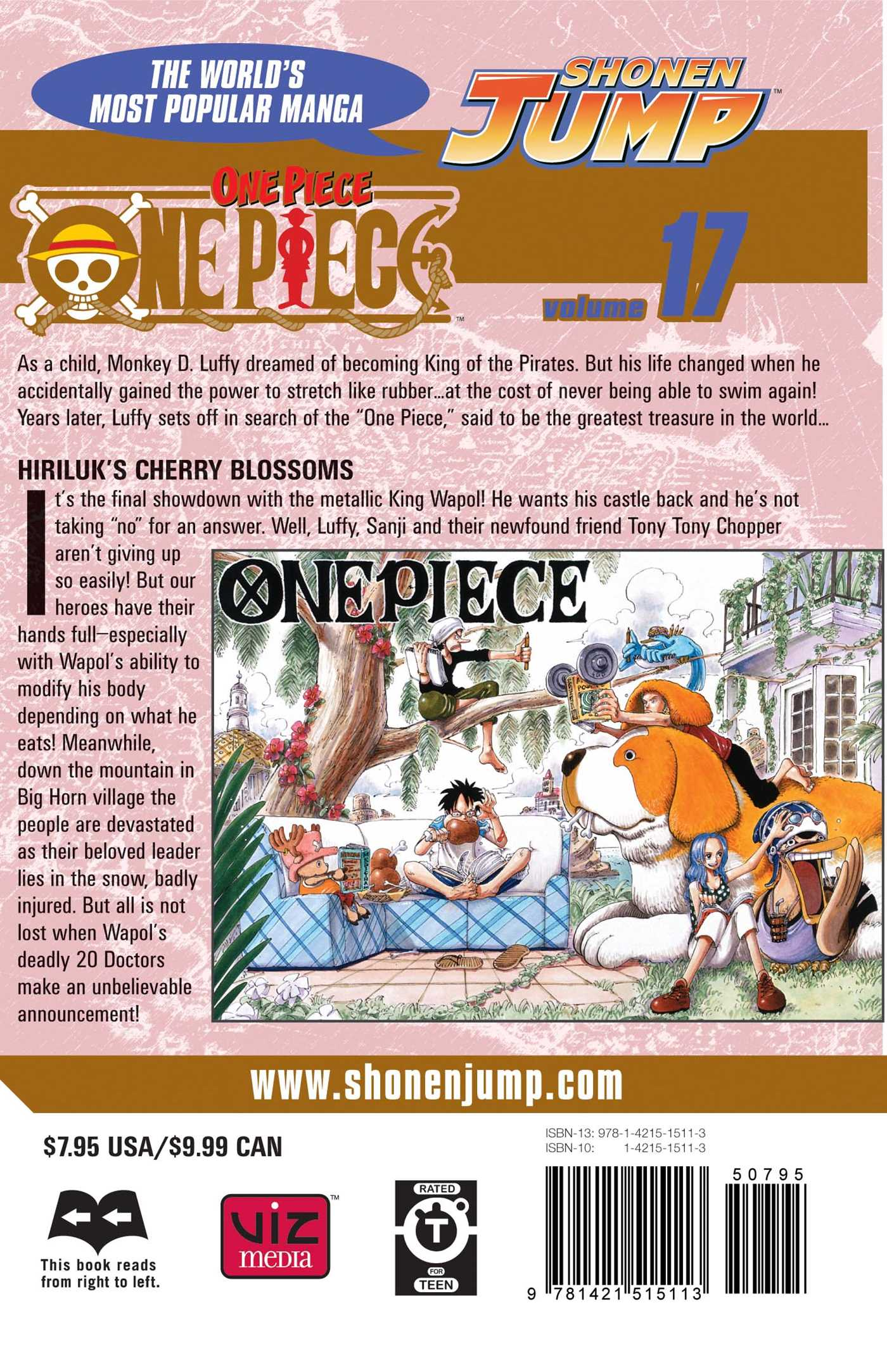 One-piece-vol-17-9781421515113_hr-back