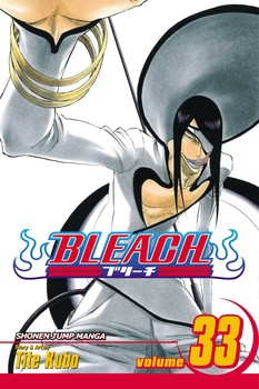 Bleach Vol 33