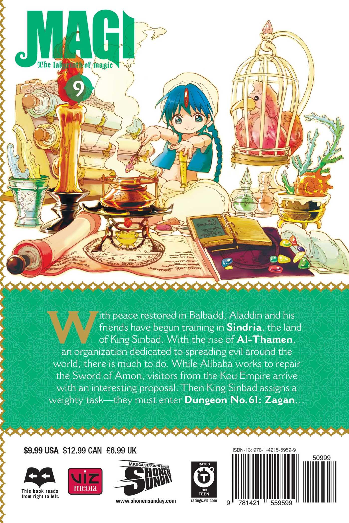 Magi the labyrinth of magic vol 9 9781421559599 hr back