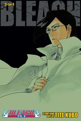 Bleach (3-in-1 Edition), Vol. 24