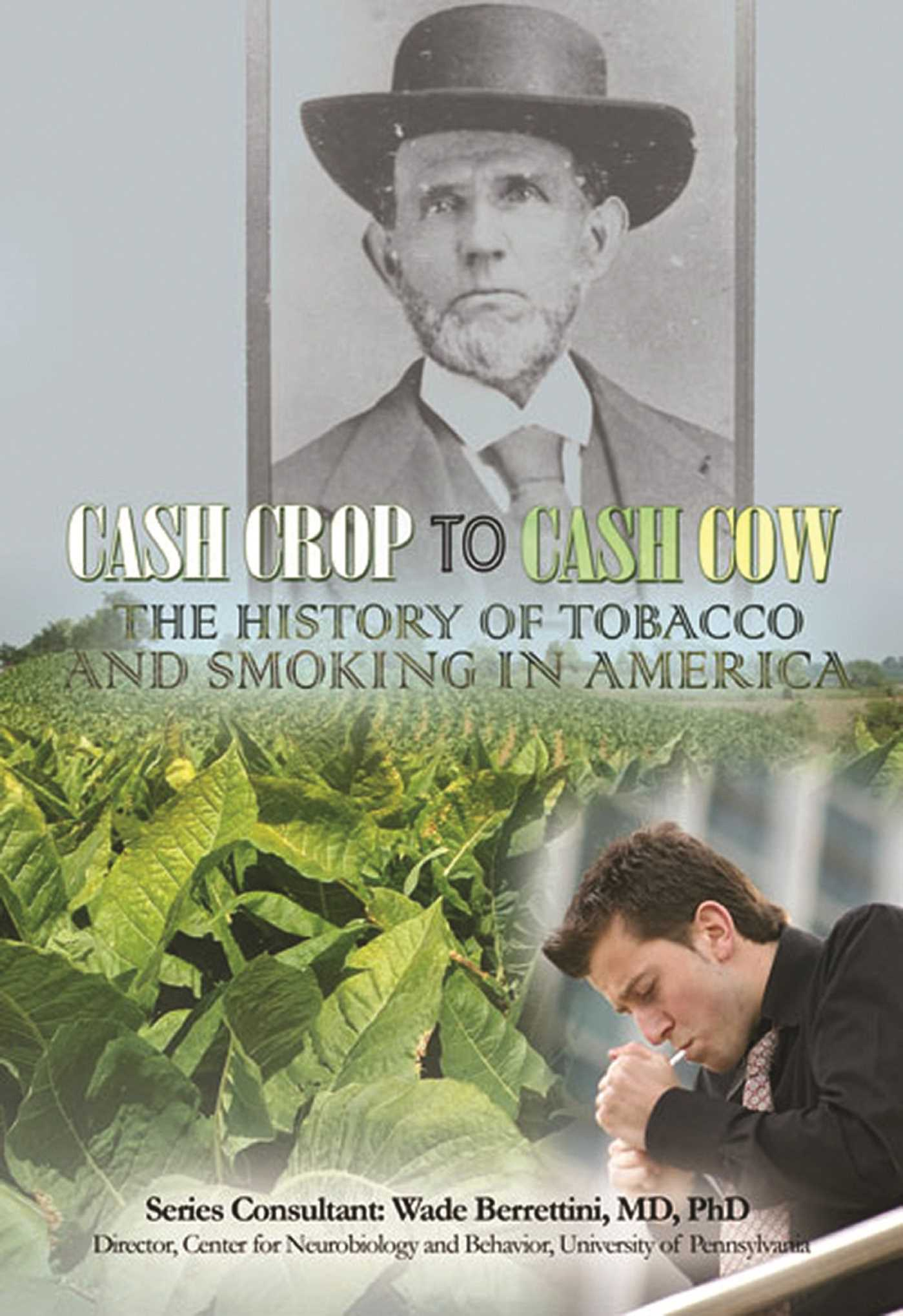 the history of smoking in america essay By the 1700s smoking had become more widespread and a tobacco industry had developed industry when was tobacco first considered to be dangerous to health in 1602 an anonymous english author published an essay titled worke of chimney sweepers (sic) which stated that illnesses often seen in chimney sweepers were caused by soot and that tobacco may have similar effects.