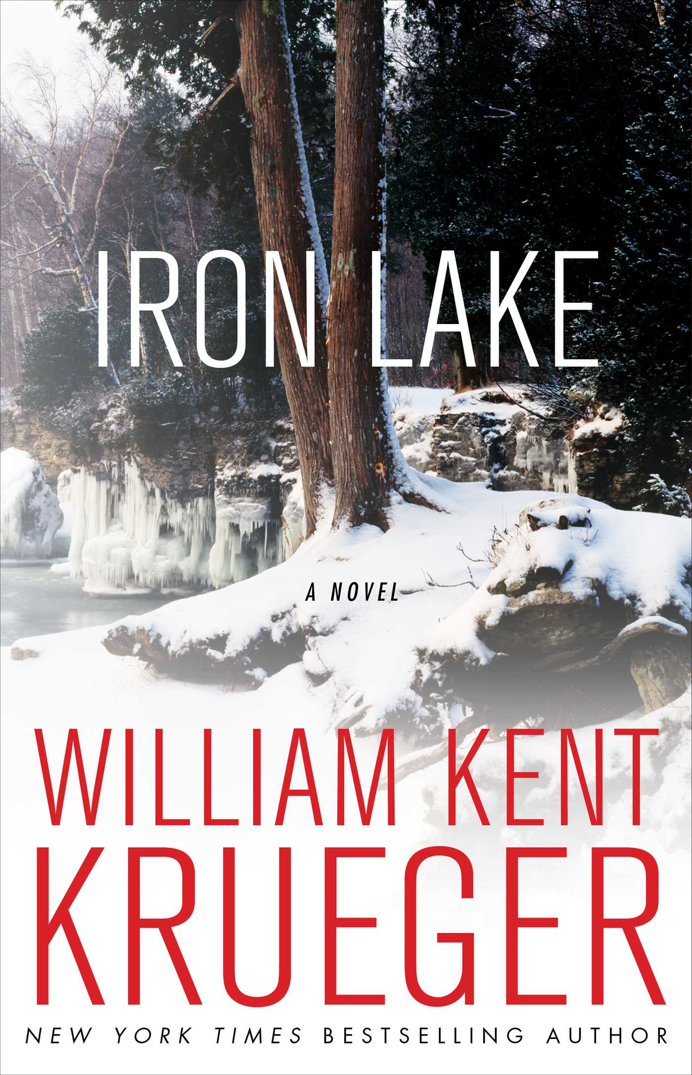 Iron-lake-9781439157282_hr