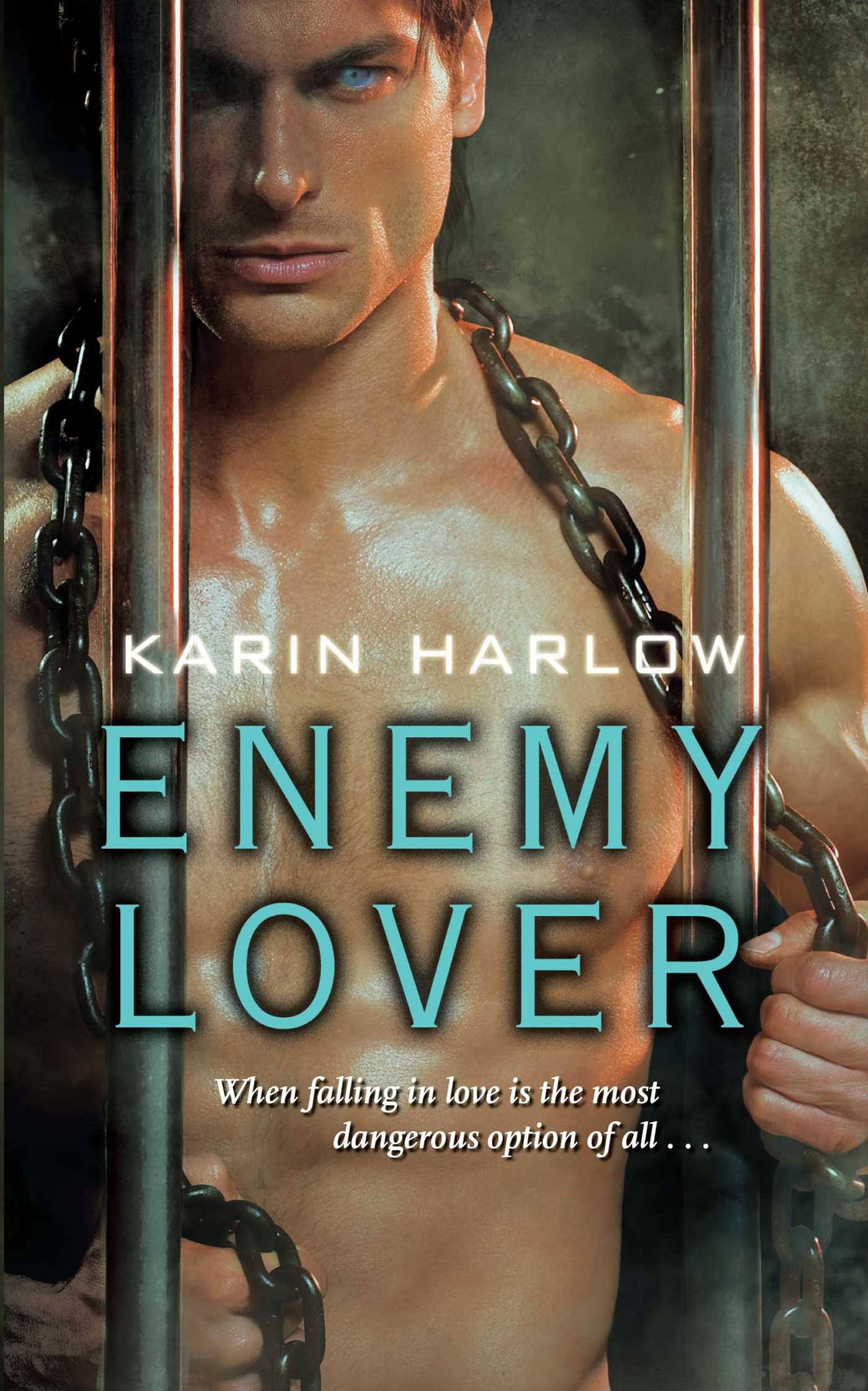 Enemy lover 9781439177969 hr